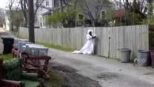 Bonnie 'Prince' Billy 'Workhorse' music video