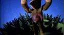 Björk 'Human Behaviour' Music Video