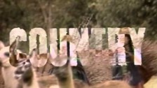 Rage Against The Machine 'Bombtrack' music video