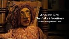 Andrew Bird 'The Fake Headlines' music video