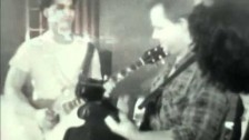 Pixies 'Monkey Gone To Heaven' music video