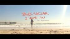 Bob Sinclar 'I Want You' music video