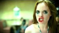 Brian Haner 'Fistfight at the Wafflehouse' music video