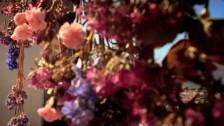 Lucia Comnes 'Potpourri' music video
