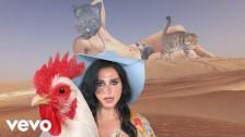 Ke$ha 'Little Bit Of Love' music video