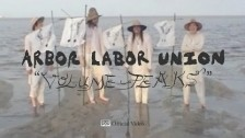 Arbor Labor Union 'Volume Peaks' music video