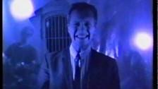 The Blue Aeroplanes 'Tolerance' music video