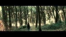 Giardini Di Mirò 'Time on Time' music video
