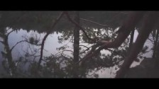 Siv Jakobsen 'How We Used To Love' music video
