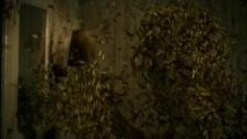 Beast 'Mr. Hurricane' music video