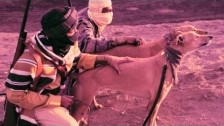 Tre Mission 'Stigmata' music video