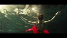 Manatee Commune 'Brush' music video
