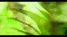Kristin Hersh 'In Shock' music video