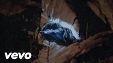 Lari Lu 'Serce' music video