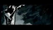 Tupelo Honey 'Morphine' music video