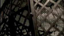Black Guayaba 'Ayer' music video