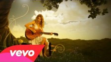 Taylor Swift 'Fifteen' music video