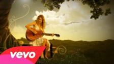 Taylor Swift 'Fifteen' music video
