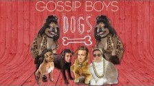 Gossip Boys 'Dogs (Barking at Me)' music video