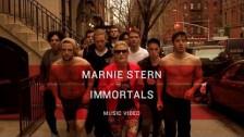 Marnie Stern 'Immortals' music video