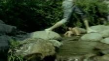 Juli 'Geile Zeit' music video