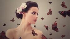 Danny Darko 'Like a Butterfly' music video