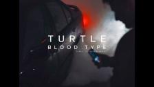 Turtle 'Bloodtype' music video