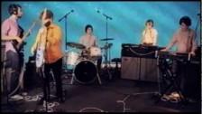 Ape School 'Weak in the Teeth' music video