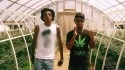 Ty Dolla $ign 'Irie' Music Video