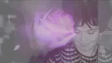 Seyr 'Crowds' music video