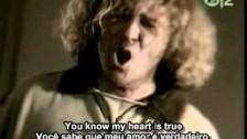 Van Halen 'Can't Stop Lovin' You' music video
