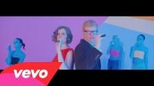 The New Pornographers 'Dancehall Domine' music video