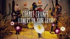 Cobalt Cranes 'Flowers On Your Grave' music video