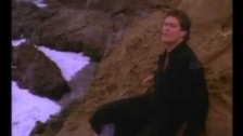 David Hasselhoff 'Flying On The Wings Of Tenderness' music video