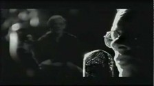 Warren Zevon 'Searchin' For A Heart' music video