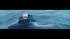 Once A Tree 'Breakdown' music video