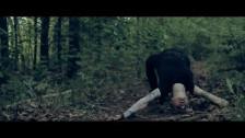 Yi 'Ladyfingers' music video