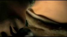 Slipknot 'Vermillion Pt. 2' music video