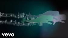 Parekh & Singh 'Philosophize' music video