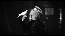 Warhaus 'The Good Lie' music video