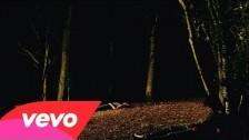 Glass Animals 'Psylla' music video