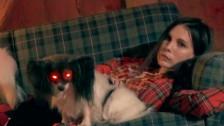 Skott 'Bloodhound' music video