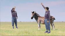 John Mayer 'New Light' music video