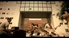 Max Gazzé 'Splendere ogni giorno il sole' music video
