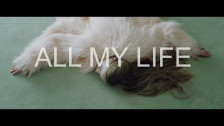 Strangers on a Plane 'All My Life' music video