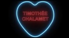 The Foxies 'Timothée Chalamet' music video