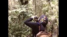 Goldfrapp 'Yellow Halo' music video