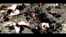 Skillet 'Whispers In The Dark' music video