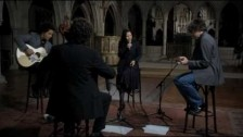 Natalie Merchant 'The Man In The Wilderness' music video
