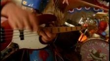 Primus 'Wynona's Big Brown Beaver' music video